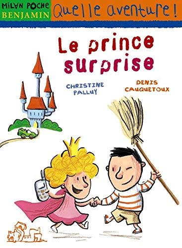 9782745923233: Le prince surprise