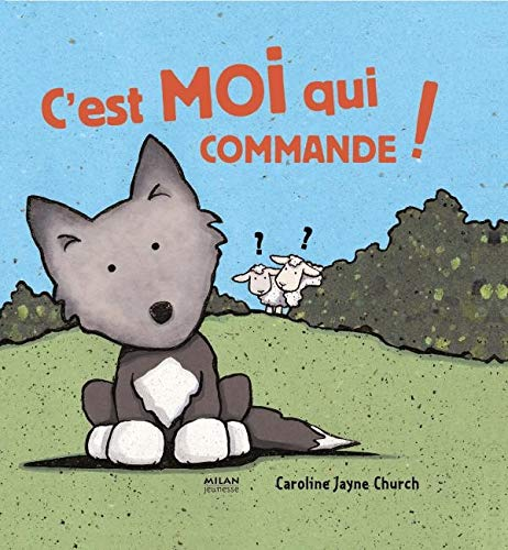 C'est moi qui commande ! (French Edition) (2745924850) by Caroline-Jayne Church