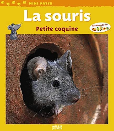 9782745929075: La souris : Petite coquine