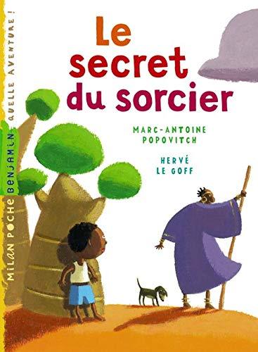 9782745932853: Le secret du sorcier