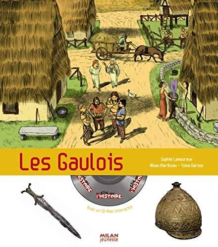 9782745938985: Les Gaulois (1Cédérom)