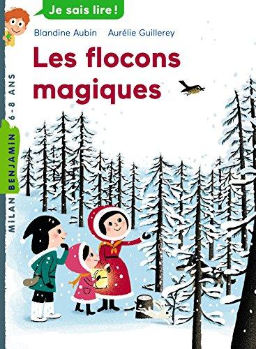 9782745957320: Les flocons magiques