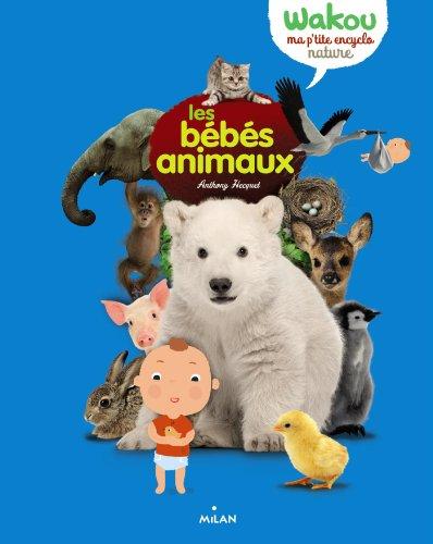 BÉBÉS ANIMAUX (LES): HECQUET ANTHONY