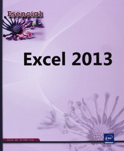 9782746084049: EXCEL 2013