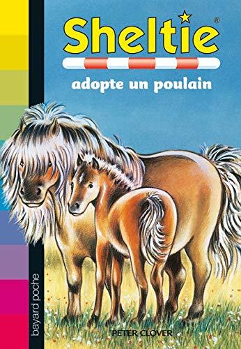 9782747018319: Sheltie, Tome 22 : Sheltie adopte un poulain