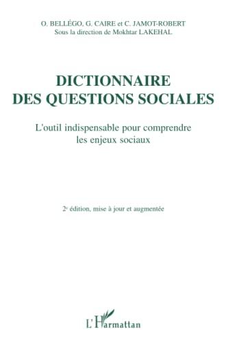 9782747591416: Dictionnaire des questions sociales : L'outil indispensable pour comprendre les enjeux sociaux