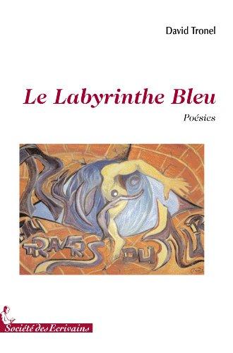 9782748036756: le labyrinthe bleu