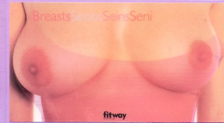 9782752801449: Breasts