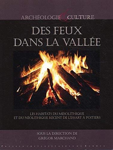 Des feux dans la vallée : les habitats du mésolithique et du néolithique r&...