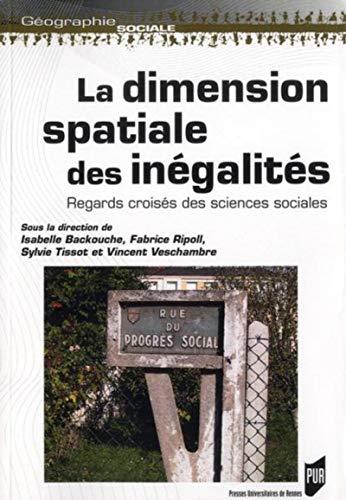 dimension spatiale des inegalites: Fabrice Ripoli, Sylvie Tissot