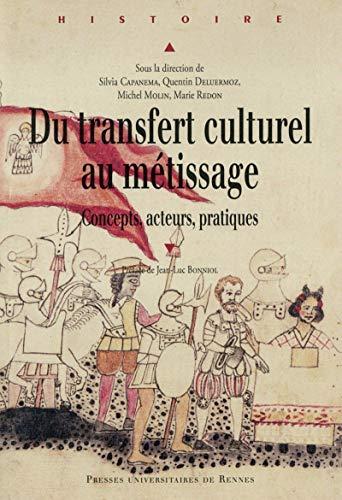 Du transfert culturel au métissage : concepts, acteurs, pratiques