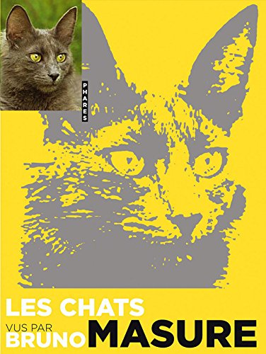 Les chats vus par Bruno Masure (French Edition): Bruno Masure