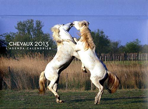 9782755609875: agenda calendrier chevaux 2013