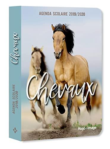 9782755641288: Agenda scolaire 2019-2020 Chevaux