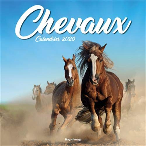 9782755642520: Calendrier mural Chevaux 2020