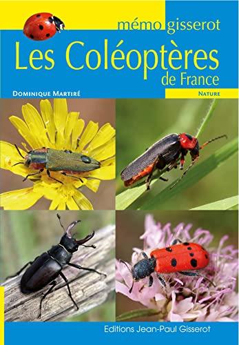 9782755804751: Memo - les Coleoptheres de France
