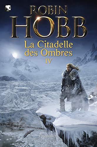 9782756410791: Serments et Deuils - Le Dragon des glaces - L'Homme noir - Adieux et Retrouvailles