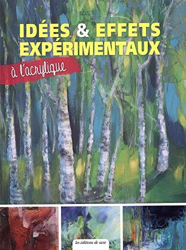 9782756525938: Idées & effets expérimentaux à l'acrylique