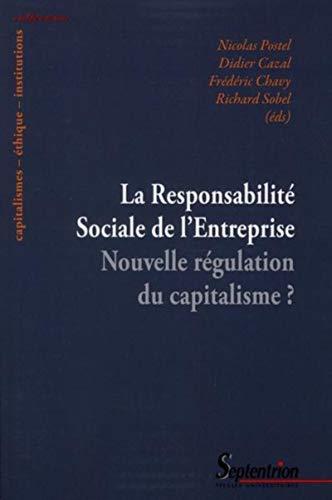 responsabilite sociale et environnementale des entreprises: Didier Cazal, Fr�d�ric Chavy, Nicolas ...