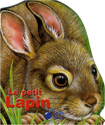 9782758302414: Petit Lapin (Mes Compagnons)