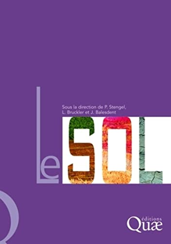 9782759203017: Le sol (French Edition)
