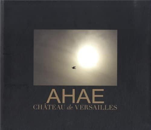 Ahae, château de Versailles : Fenêtre sur l'extraordinaire: Ahae, Anne-Marie ...