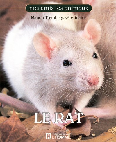 9782761926591: Le Rat (French Edition)