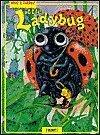 9782764104699: Little Ladybug (Who's There?)