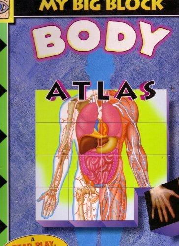 My Big Block Body Atlas