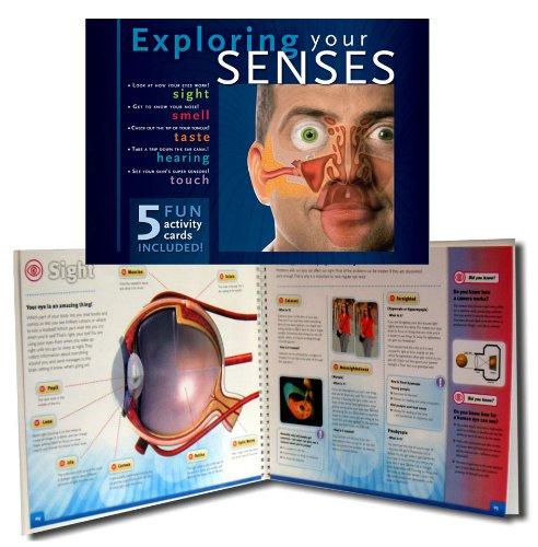 9782764121894: Exploring Your Senses