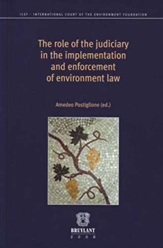 9782802726456: The Role of the Judiciary in the Implementation and Enforcement of Environment Law