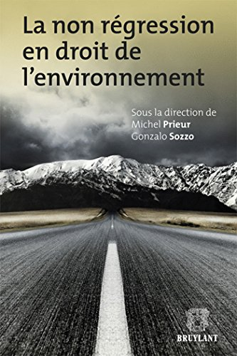9782802737186: Non Regression En Droit De L'Environnement (English and French Edition)