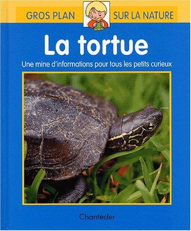 9782803441129: La tortue
