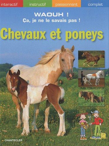 Chevaux et poneys - Martina Gorgas, Elisabetta Ferrero, Charlotte Wagner et Philipp Röhlich