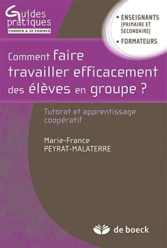 COMMENT FAIRE TRAVAILLER EFFICACEMENT: PEYRAT 1RE ED 2011
