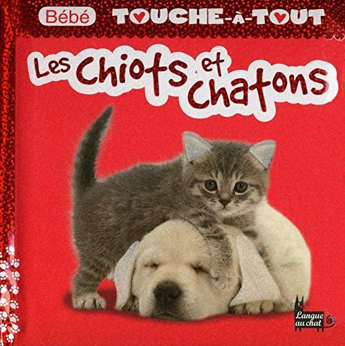 9782806302632: Bébé touche-à-tout - Les chiots et chatons