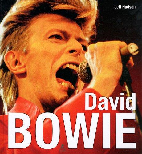 9782809904291: David Bowie