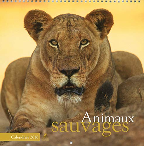 9782809913125: ANIMAUX SAUVAGE CALEND 2016