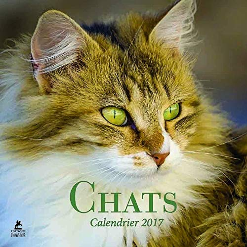 9782809913293: Chats calendrier 2017