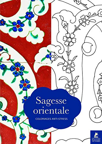 9782809913958: Sagesse orientale : Coloriages anti-stress