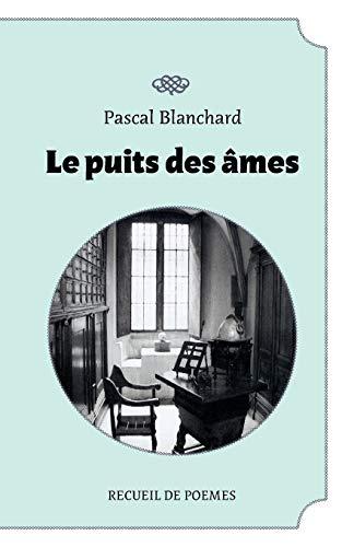 9782810611140: Le puit des âmes (French Edition)