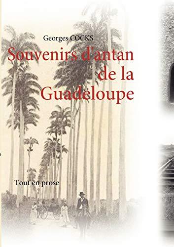 9782810619412: Souvenirs d'antan (French Edition)