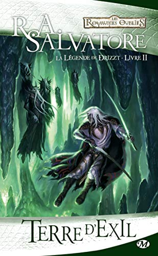 La Légende de Drizzt, Tome 2 (French Edition) (2811201637) by [???]