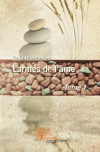 Larmes de l'âme: Gaël Hamacher