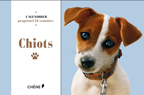 CALENDRIER CHIOTS 2016: COLLECTIF