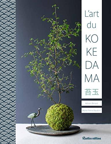 9782815305396: L'ART DU KOKEDAMA