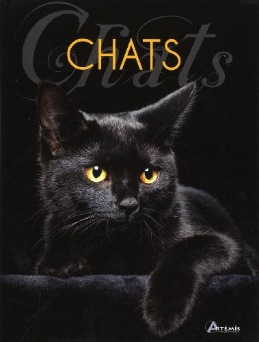 9782816002027: Chats (French Edition)