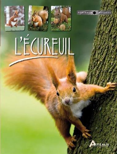9782816002478: L'écureuil