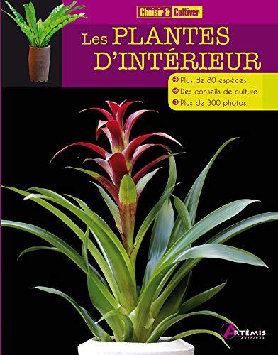 PLANTES D'INTÉRIEUR (LES): COLLECTIF