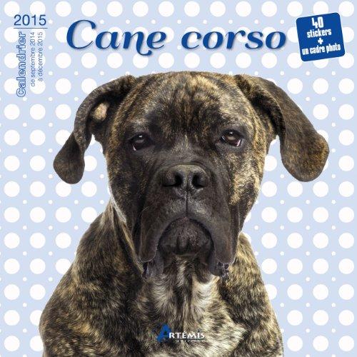9782816006056: Cane Corso (2015)